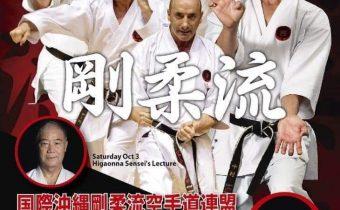 Zoom Black Belt Gashuku IOGKF, 3.10.2020